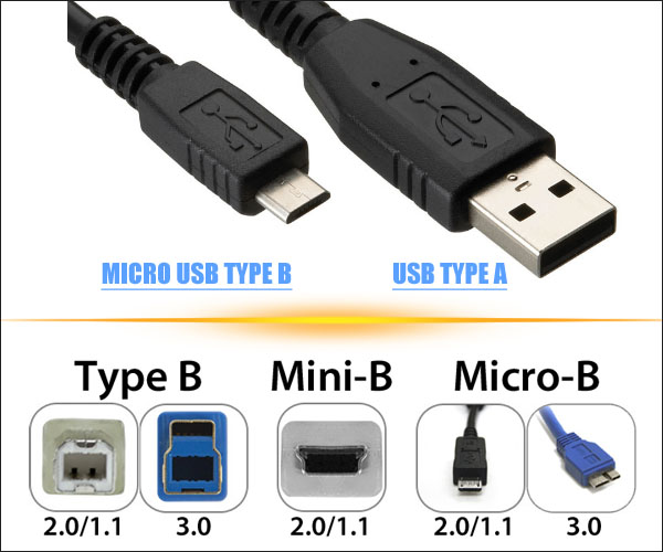 USB Type A and USB Type B