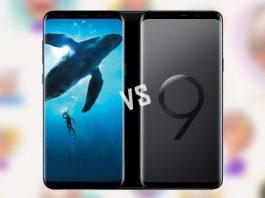Galaxy S8 vs S9 full comparison