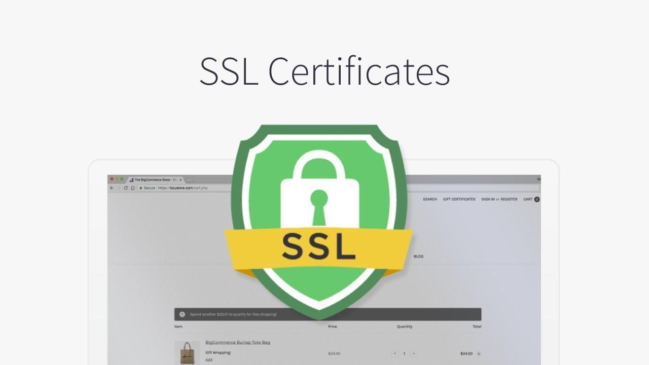 certificate certificates cheap security secure push seo wild iul jul internet certificatele pentru